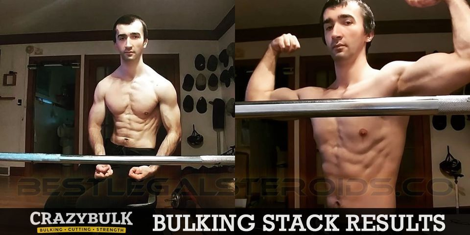 crazy bulk bulking stack results daniel wartoba legal steroids user before after